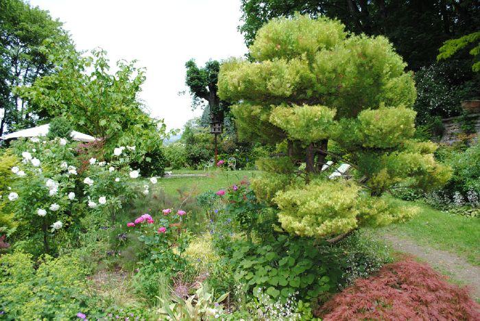 Accueil for Jardins et terrasses lyon